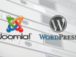 Maintenance & Hosting of Joomla and Wordpress Sites